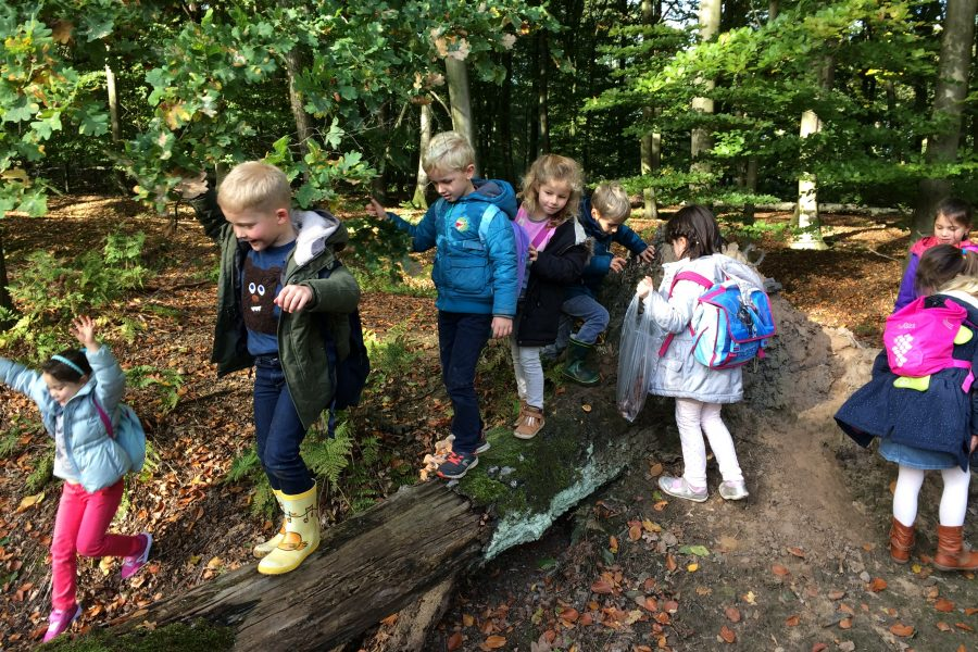 Op stap in het bos (Puyenbroeck in Wachtebeke)