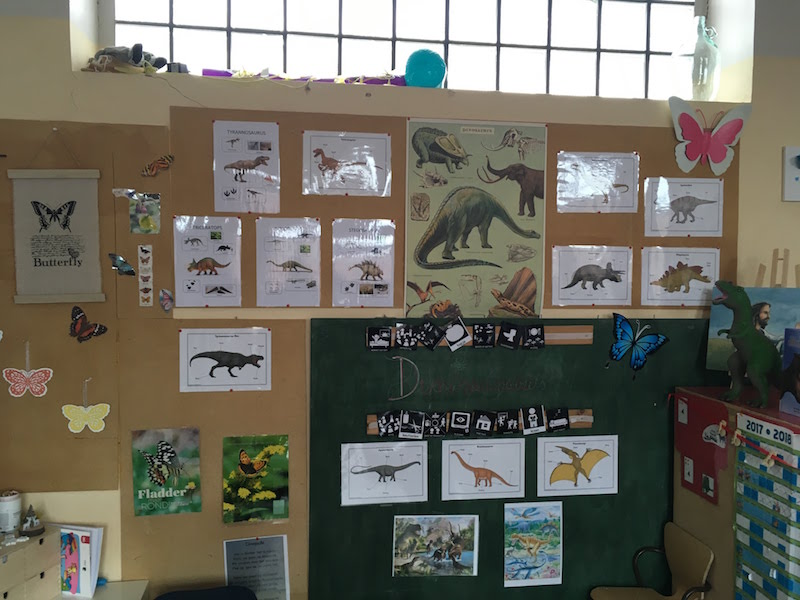 Thema dinosaurussen in de vlinderklas